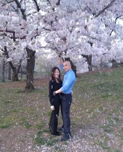 Raining Blossoms