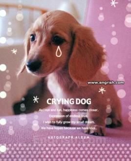 crying-dog